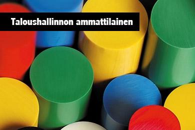 Taloushallinnon Ammattilainen| Vink Finland Oy
